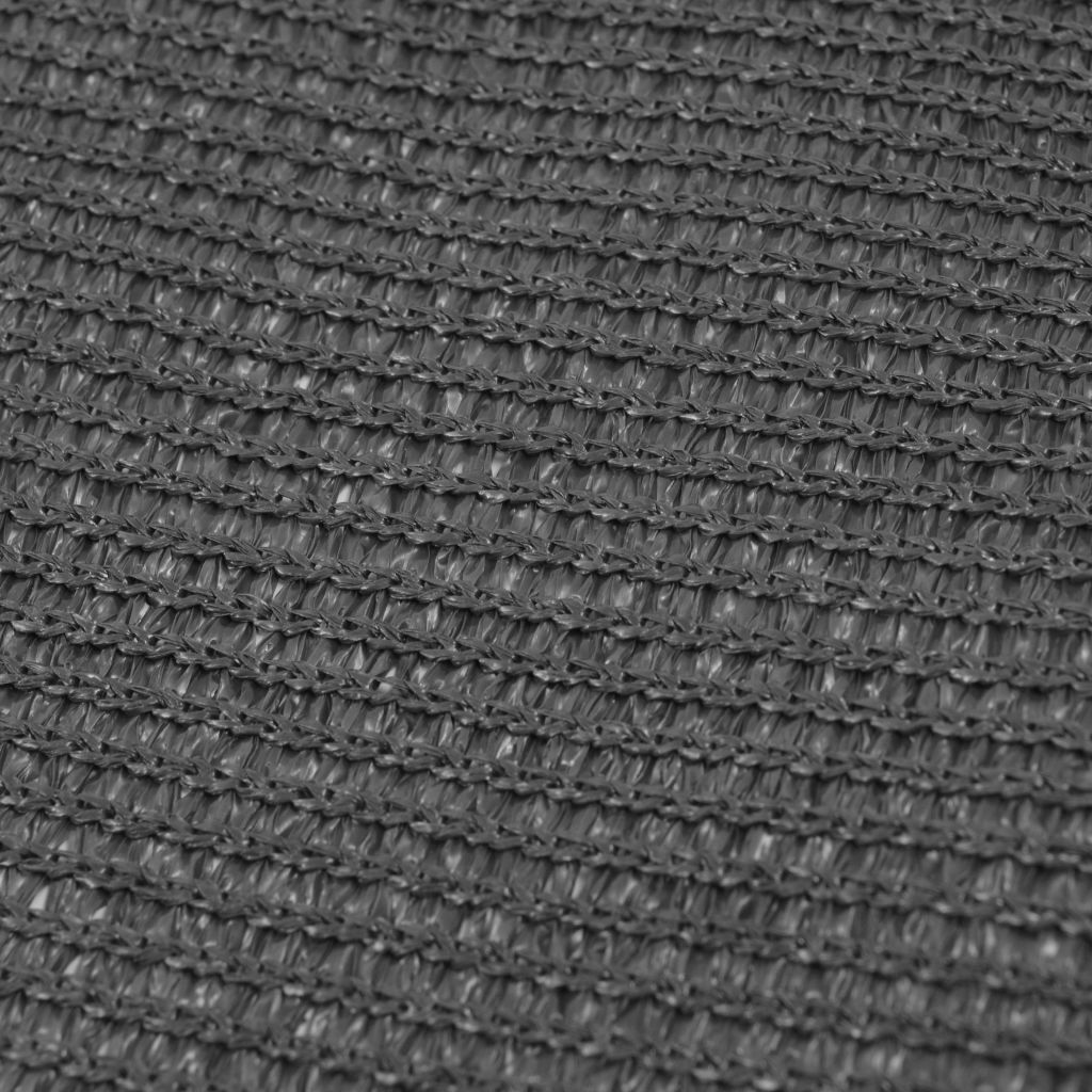 Tent Carpet 250x400 cm Anthracite
