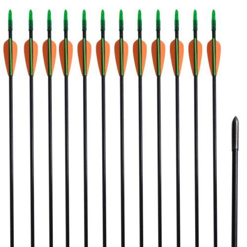 "Standard Recurve Bow Arrows 30"" 0.6 cm Fiberglass 12 pcs"