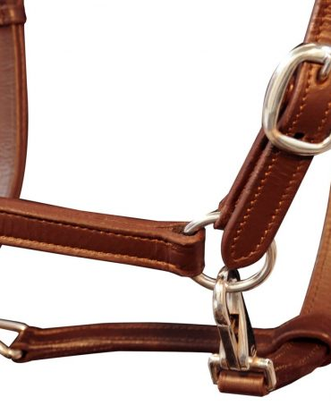 Real Leather Headcollar Stable Halter Adjustable Brown Cob